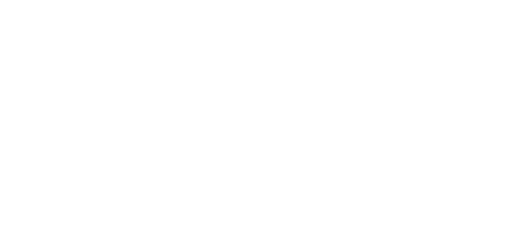 Support Systems Inc.